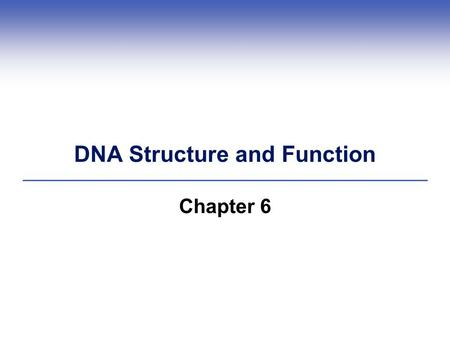DNA Structure and Function Chapter 6. 1.1 Impacts/Issues Here Kitty, Kitty, Kitty, Kitty, Kitty  Making clones (exact genetic copies) of adult animals.