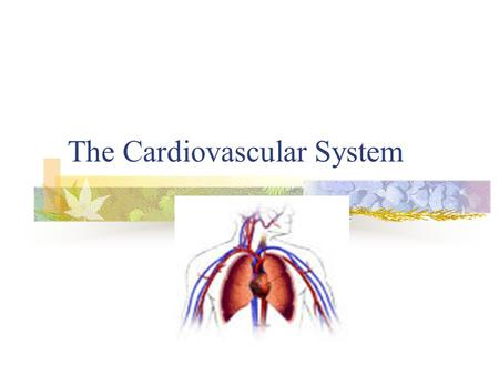 The Cardiovascular System. Functions Transportation What is transported? Vehicle? The force?