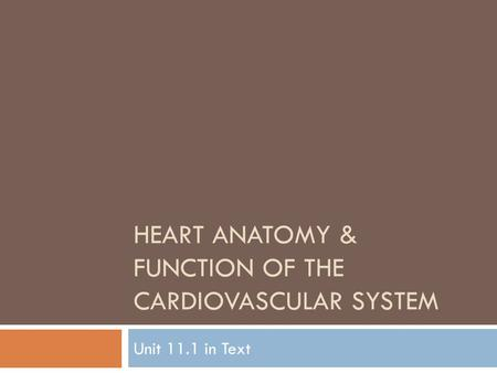 HEART ANATOMY & FUNCTION OF THE CARDIOVASCULAR SYSTEM Unit 11.1 in Text.