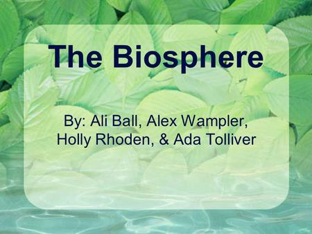 The Biosphere By: Ali Ball, Alex Wampler, Holly Rhoden, & Ada Tolliver.