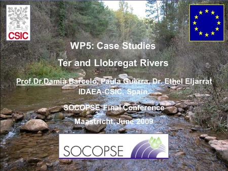 SOCOPSE Final Conference Maastricht, June 2009 Prof.Dr.Damià Barceló, Paula Guerra, Dr. Ethel Eljarrat IDAEA-CSIC, Spain. WP5: Case Studies Ter and Llobregat.