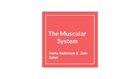 The Muscular System Aisha Suleiman & Zein Saket. Main Functions of the Muscular System Generating Warmth Maintaining Posture Causing Movement.