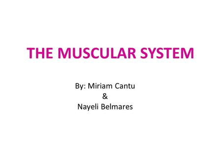 THE MUSCULAR SYSTEM By: Miriam Cantu & Nayeli Belmares.