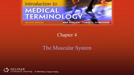 © 2009 Delmar, Cengage Learning Chapter 4 The Muscular System.