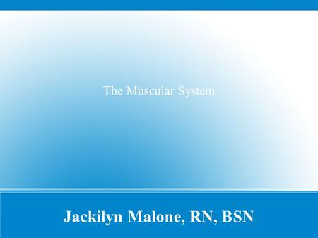 Jackilyn Malone, RN, BSN The Muscular System. ● How many muscles are in the human body? – OVER 600!!