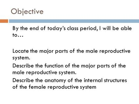Objective By the end of today's class period, I will be able to… Locate the major parts of the male reproductive system. Describe the function of the major.