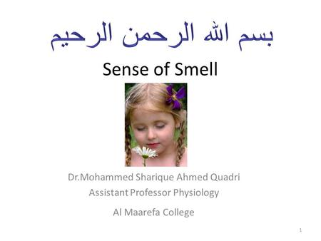 Sense of Smell Dr.Mohammed Sharique Ahmed Quadri Assistant Professor Physiology Al Maarefa College 1.
