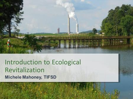 Introduction to Ecological Revitalization Michele Mahoney, TIFSD.