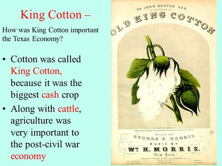 King Cotton – Cotton was called King Cotton, because it was the biggest cash crop Along with cattle, agriculture was very important to the post-civil war.