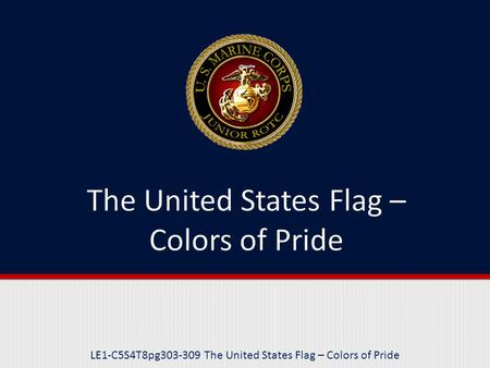 LE1-C5S4T8pg303-309 The United States Flag – Colors of Pride.