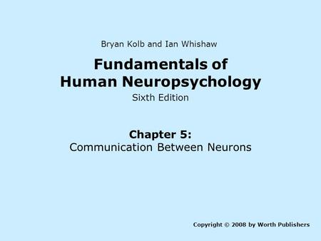 fundamentals of human neuropsychology kolb pdf