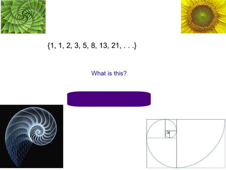 {1, 1, 2, 3, 5, 8, 13, 21,...} What is this? Fibonacci Sequence.