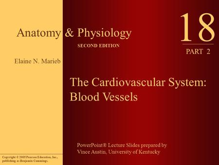 PowerPoint® Lecture Slides prepared by Vince Austin, University of Kentucky Anatomy & Physiology SECOND EDITION Copyright © 2005 Pearson Education, Inc.,