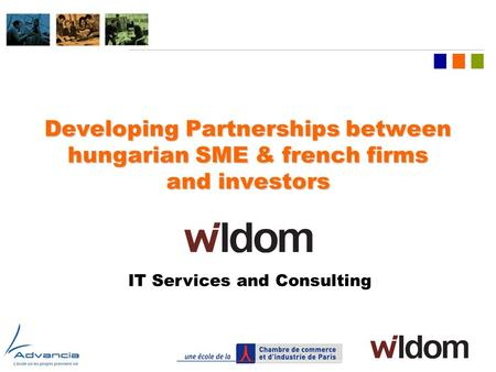 LOGO OF COMPANY Developing Partnerships between hungarian SME & french firms and investors IT Services and Consulting.