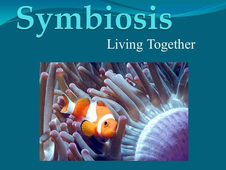 Living Together Presentation Outline Symbiosis Description Obligate vs. Facultative Main Types of Symbiosis Mutualism Commensalism Parasitism Examples.