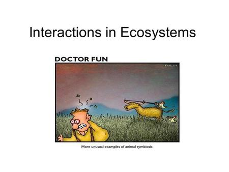 Interactions in Ecosystems. Habitat vs Niche Habitat The habitat is the place where an organism lives out its life. –It is where the organism finds food,