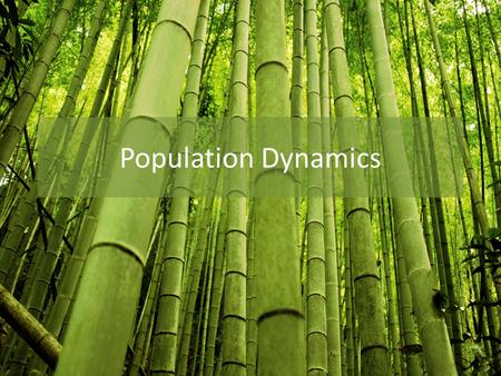 how population size can be affected by natality immigration mortality and emigration Measuring and modelling population change factors that affect population growth population dynamics are changes in population characteristics (such as natality, mortality, immigration and emigration.