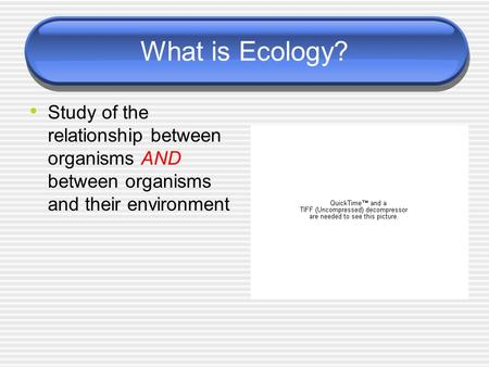 What is Ecology? Study of the relationship between organisms AND between organisms and their environment.
