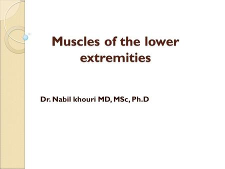 Muscles of the lower extremities Dr. Nabil khouri MD, MSc, Ph.D.