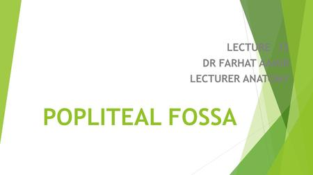 LECTURE 35 DR FARHAT AAMIR LECTURER ANATOMY