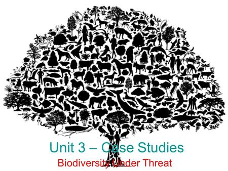 Unit 3 – Case Studies Biodiversity Under Threat. Madagascar Key Characteristics-> Total <strong>of</strong> 8 plant,4 bird <strong>and</strong> 5 primate families that are all endemic.