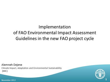 Implementation of FAO Environmental Impact Assessment Guidelines in the new FAO project cycle Alemneh Dejene Climate Impact, Adaptation and Environmental.