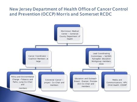 Morristown Medical Center ~ Somerset County Department of Health Cancer Coordinator ~ Coalition Members at large Policy and Environmental Change ~Tobacco.