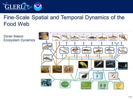 1/12 Fine-Scale Spatial and Temporal Dynamics of the Food Web Doran Mason Ecosystem Dynamics.