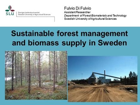 Fulvio Di Fulvio Assistant Researcher Assistant Researcher Department of Forest Biomaterials and Technology Swedish University of Agricultural Sciences.