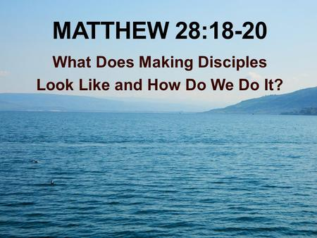 MATTHEW 28:18-20 What Does Making Disciples Look Like and How Do We Do It?