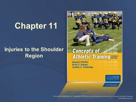 Chapter 11 Injuries to the Shoulder Region. Anatomy Review Bones: Clavicle Scapula Humerus Shoulder joints: Glenohumeral Acromioclavicular Sternoclavicular.