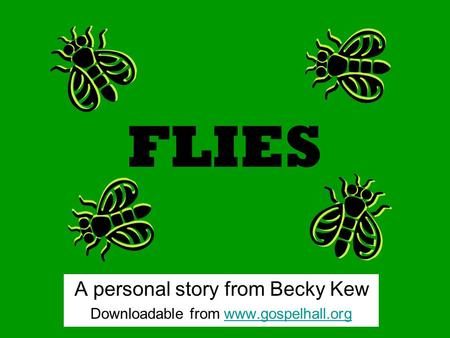 FLIES A personal story from Becky Kew Downloadable from www.gospelhall.orgwww.gospelhall.org.
