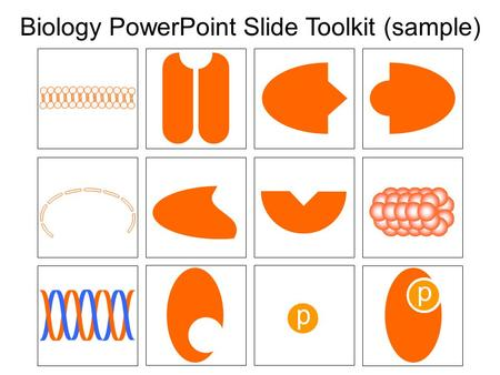 Biology PowerPoint Slide Toolkit (sample)