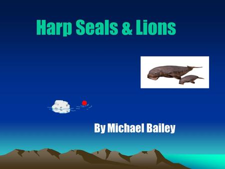 Harp Seals & Lions By Michael Bailey Baby harp seals can tell the different smells of seal to find their mothers.