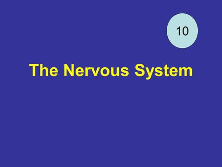The Nervous System 10. DQ 20 2-3-06 Draw a neuron and label all the parts. Get out your frog book to be turned in.