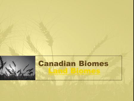 Canadian Biomes Land BiomesLand Biomes. What is a Biome?? A biome is defined as a large geographical region that has particular types of organisms (plants.