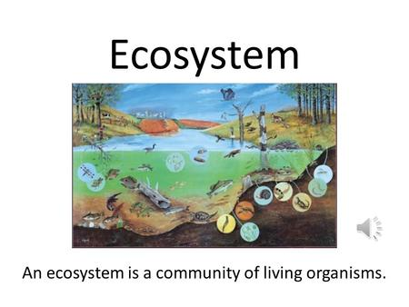 Ecosystem An ecosystem is a community of living organisms.