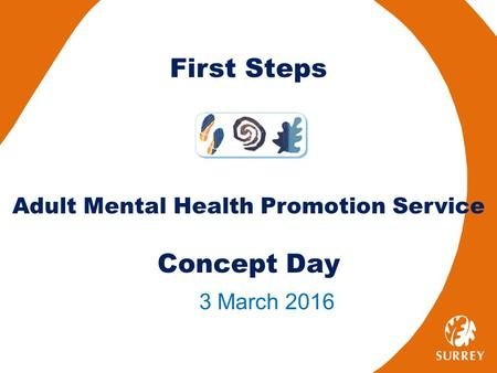 First Steps Adult Mental Health Promotion Service Concept Day 3 March 2016.
