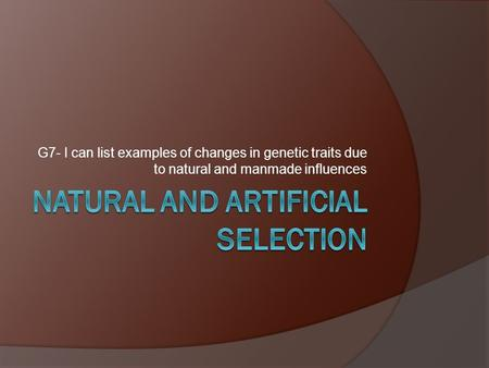 G7- I can list examples of changes in genetic traits due to natural and manmade influences.