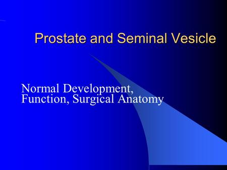 Prostate and Seminal Vesicle Normal Development, Function, Surgical Anatomy.