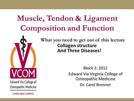 Muscle, Tendon & Ligament Composition and Function Block 2: 2012 Edward Via Virginia College of Osteopathic Medicine Dr. Carol Brenner What you need to.