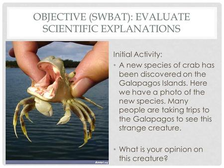 OBJECTIVE (SWBAT): EVALUATE SCIENTIFIC EXPLANATIONS Initial Activity: A new species of crab has been discovered on the Galapagos Islands. Here we have.
