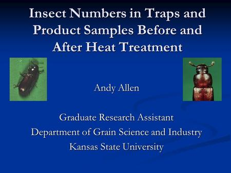 Insect Numbers in Traps and Product Samples Before and After Heat Treatment Andy Allen Graduate Research Assistant Department of Grain Science and Industry.