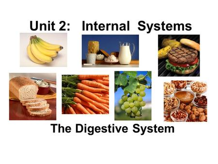 Unit 2: Internal Systems The Digestive System. Digestive System responsible for 4 major functions: 1. ingestion intake of nutrients (eating) 2. digestion.