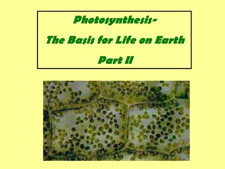 Photosynthesis- The Basis for Life on Earth Part II.