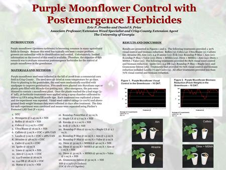 Purple Moonflower Control with Postemergence Herbicides Eric P. Prostko and Daniel S. Price Associate Professor/Extension Weed Specialist and Crisp County.