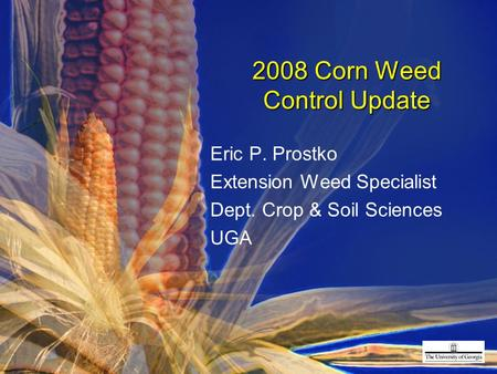 2008 Corn Weed Control Update Eric P. Prostko Extension Weed Specialist Dept. Crop & Soil Sciences UGA.