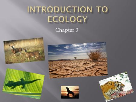 Chapter 3.  By ecology, we mean the body of knowledge concerning the economy of nature -- the investigation of the total relations of the animal both.