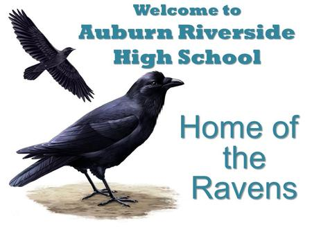 Welcome to Auburn Riverside High School Home of the Ravens.