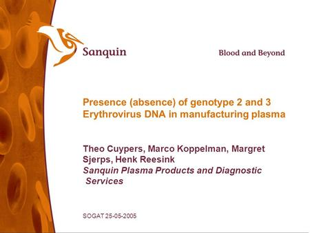 SOGAT 25-05-2005 Presence (absence) of genotype 2 and 3 Erythrovirus DNA in manufacturing plasma Theo Cuypers, Marco Koppelman, Margret Sjerps, Henk Reesink.